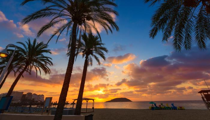 picture of Magaluf beach