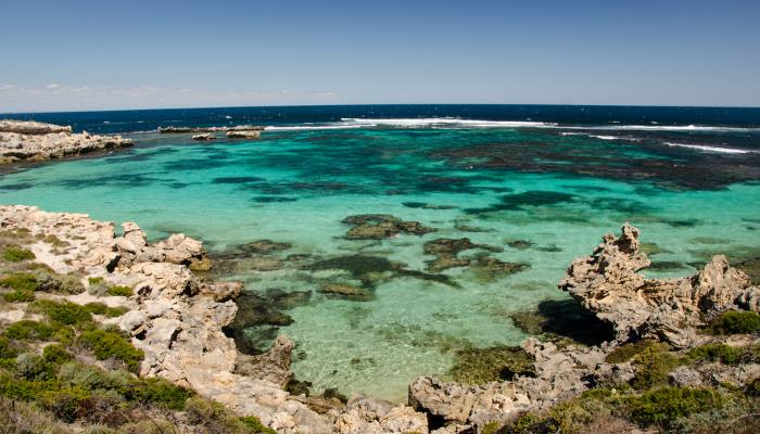 picture of rottnest in Perth