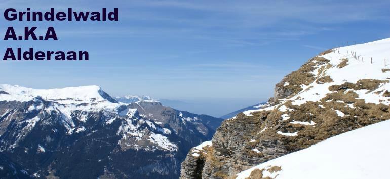 picture of Grindewald