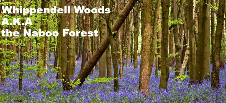 picture of Whippendell Woods