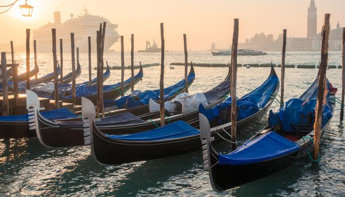 picture of gondolas on the grand canal
